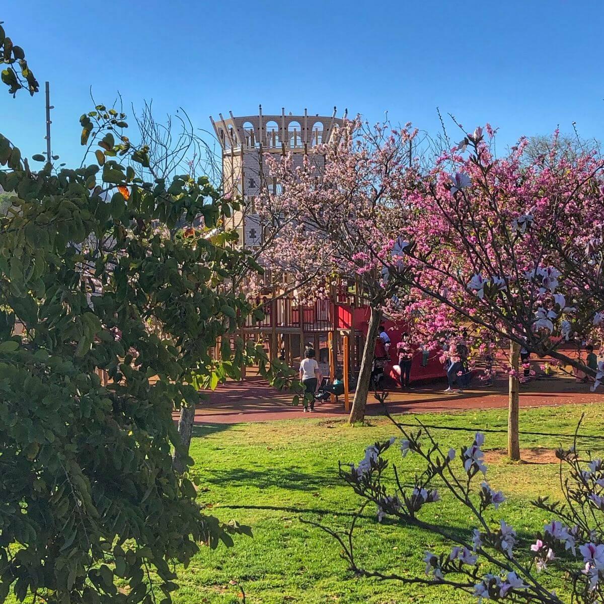 Castillo del Parc de Sa Riera