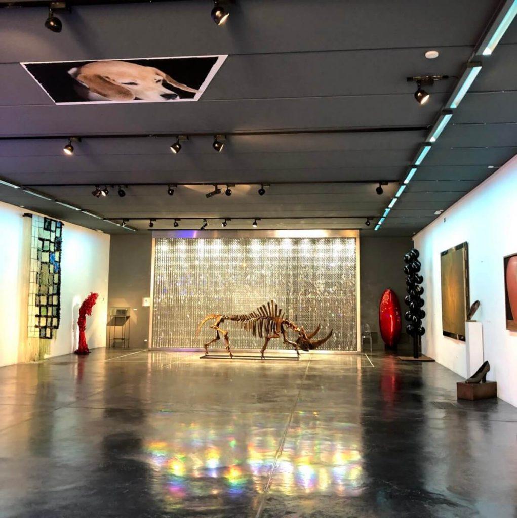 Fundación Yannick y Ben Jakober: Museo Sa Bassa Blanca