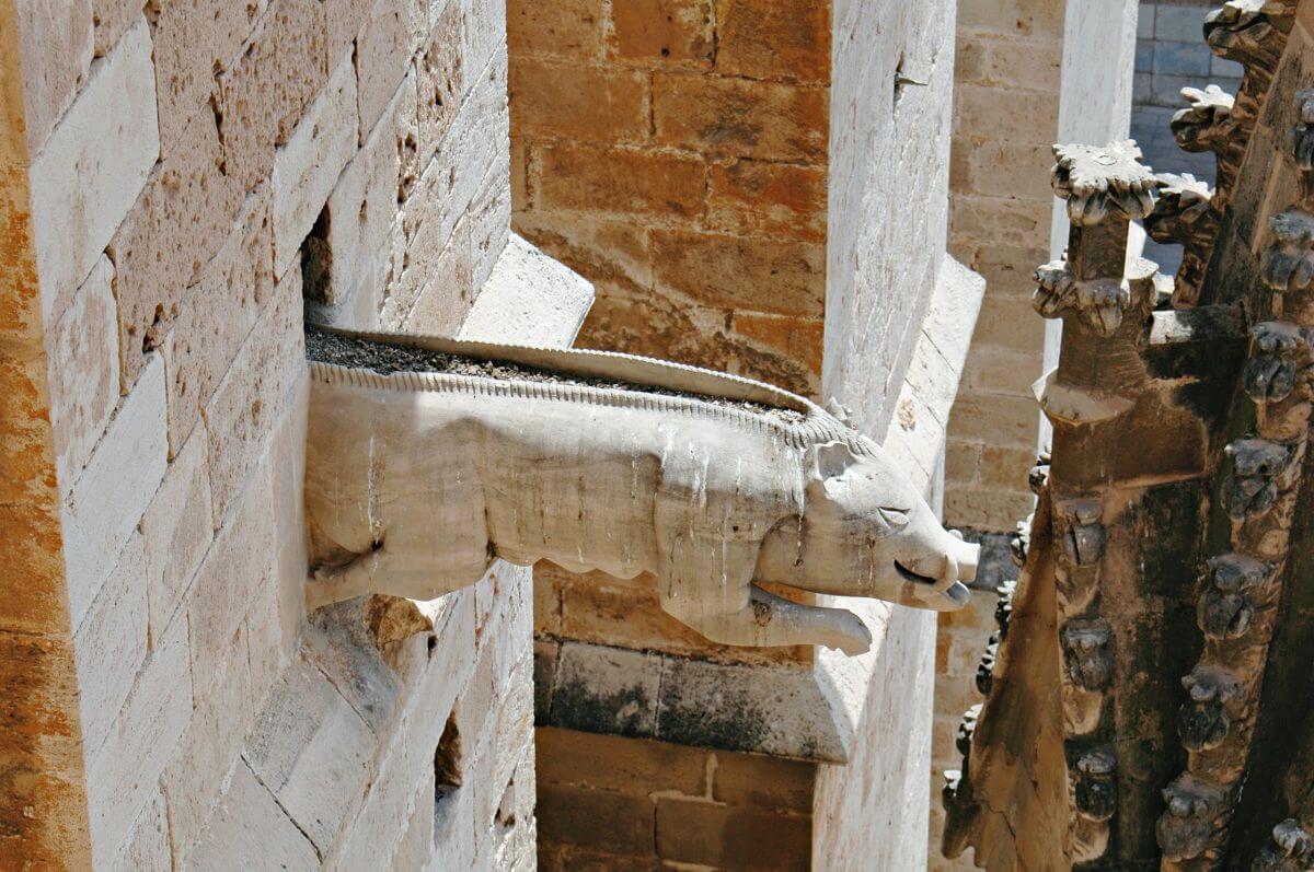 Gárgolas de la Catedral de Palma