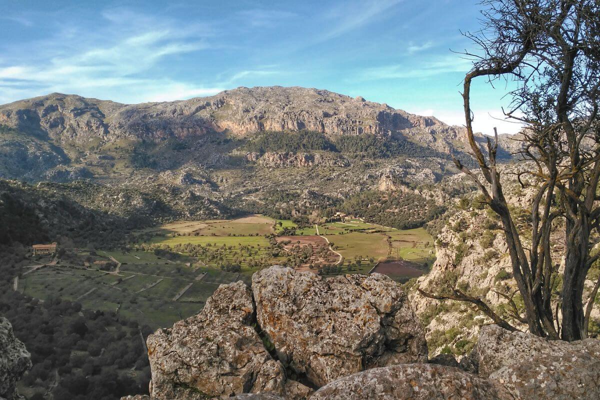 Paisaje de la Serra de Tramuntana