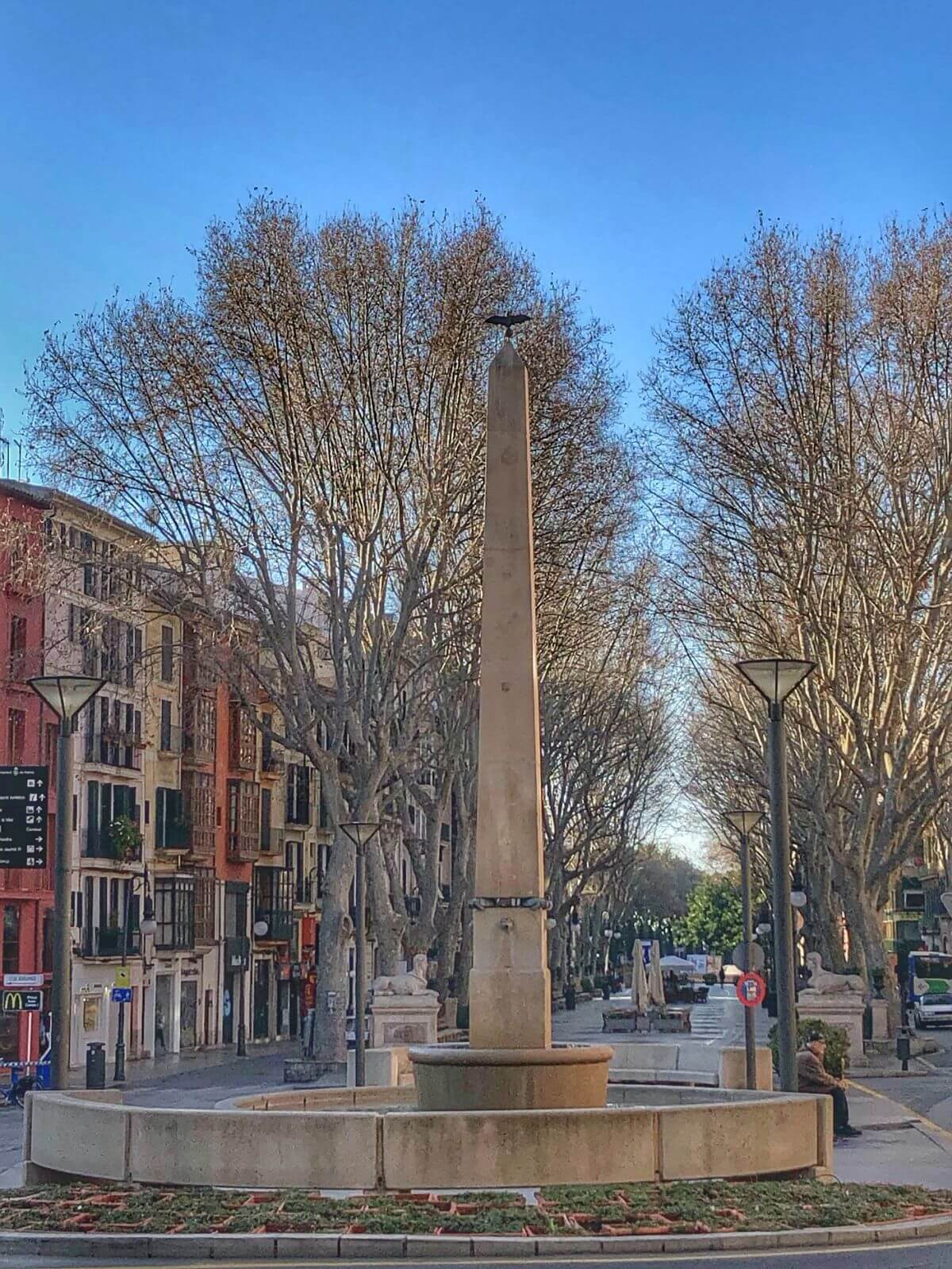 Plaza de las tortugas de Palma