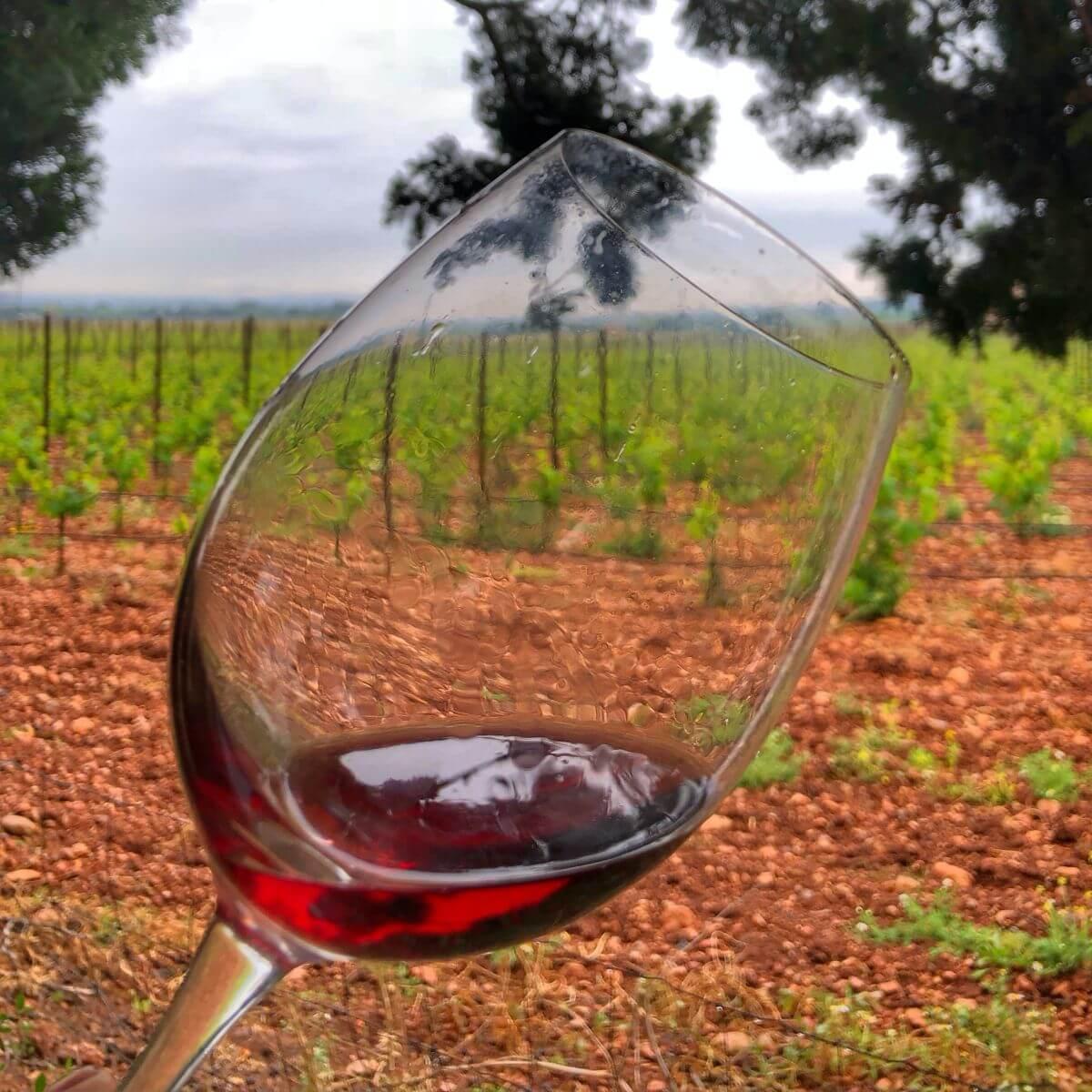 Denominación de Origen vino de Binissalem