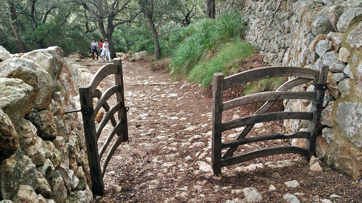 Excursión Camí des Correu
