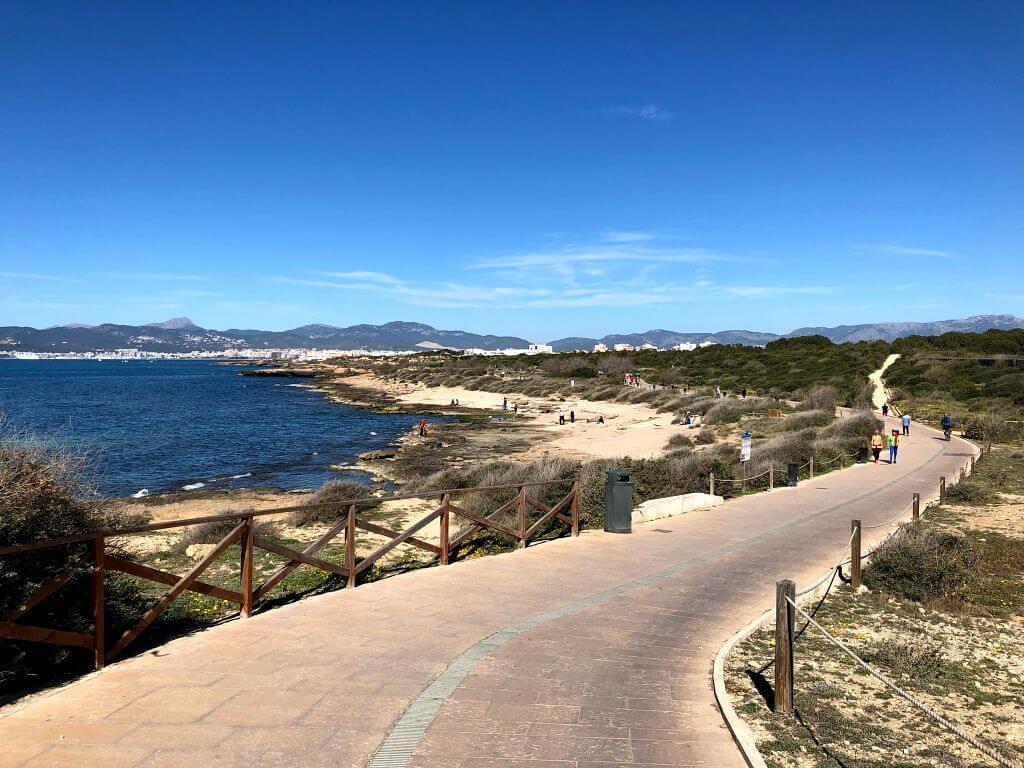 Ruta por Es Carnatge en Palma