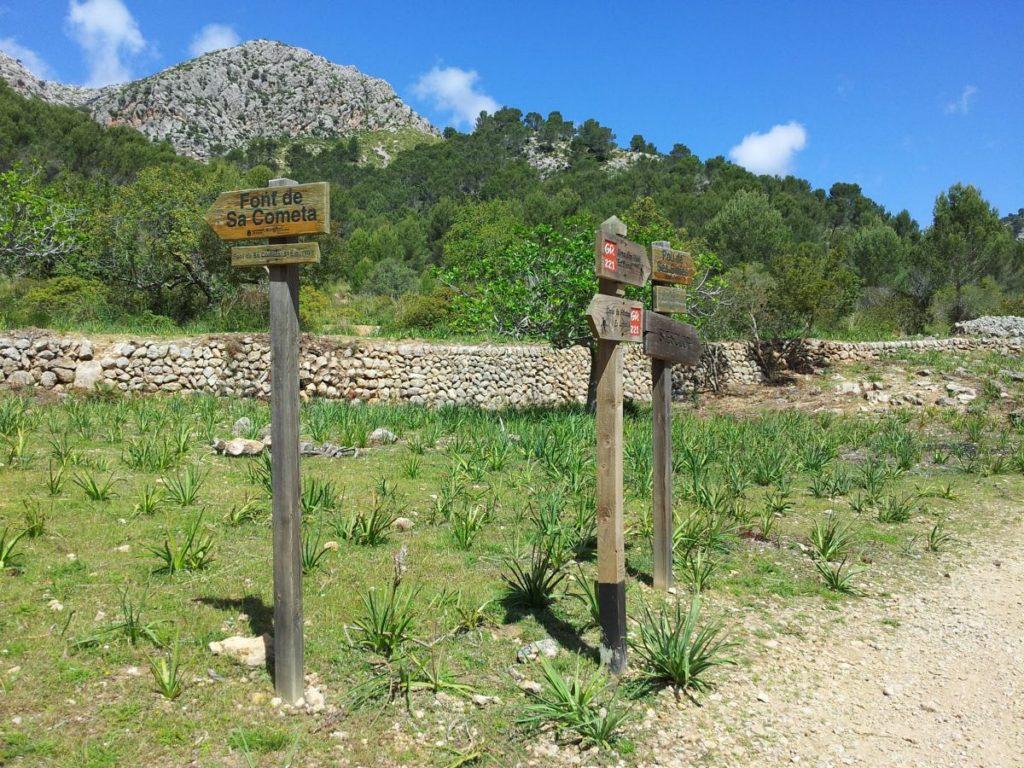Excursiones con Turisme Petit