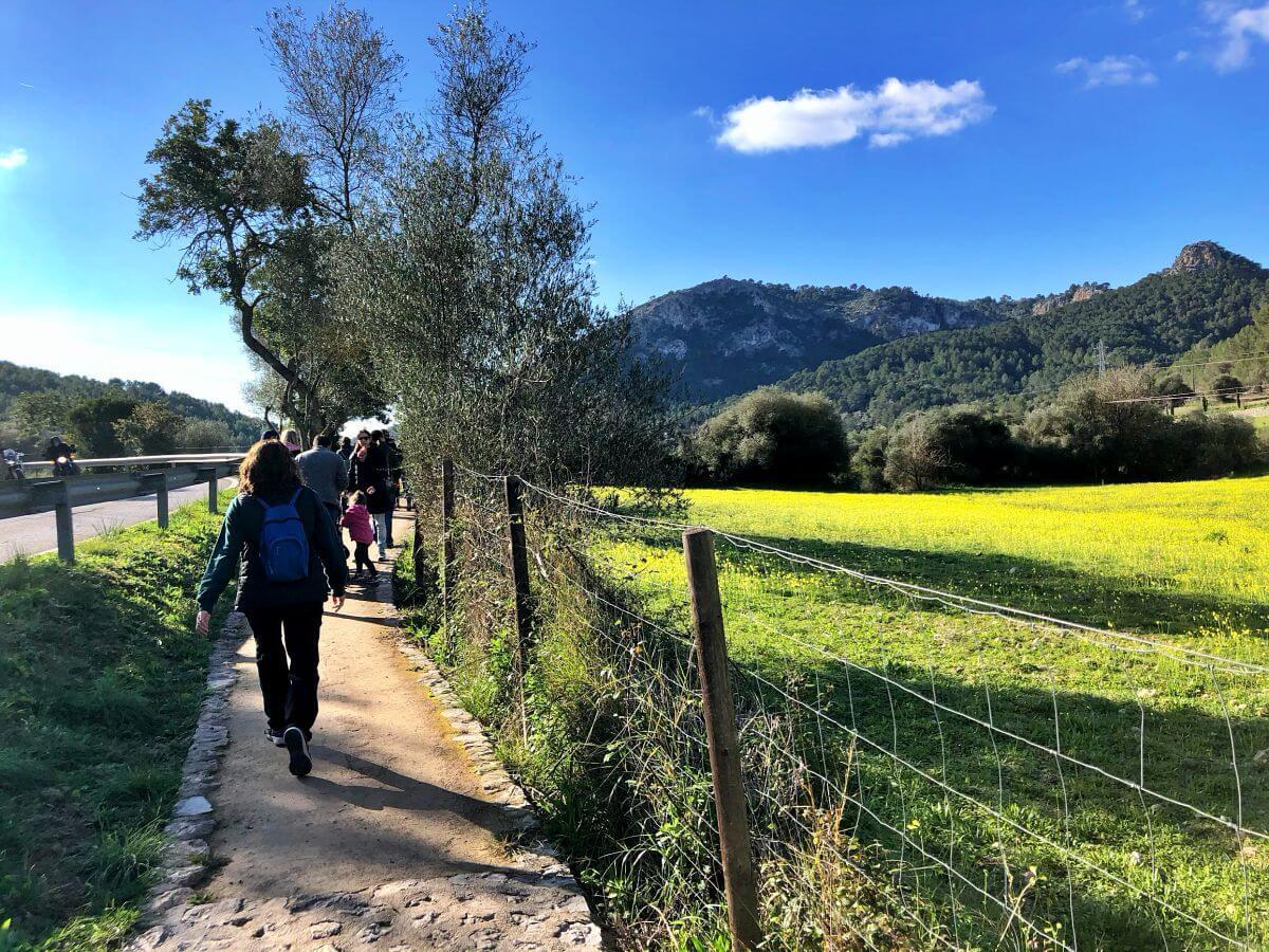 Excursión Camino de naturaleza Es Capdellà