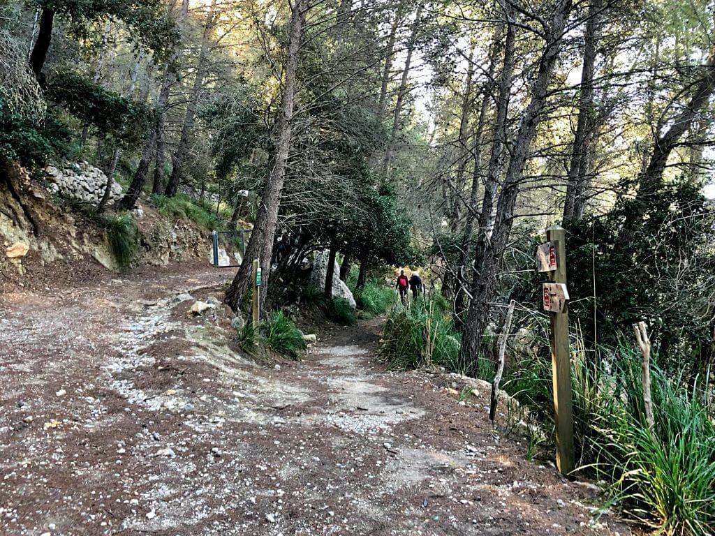 Excursión al Puig de Na Bauçana
