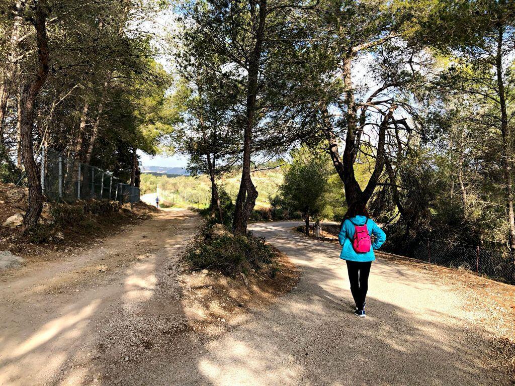 Desvio no señalizado para llegar al Puig de Sant Nofre