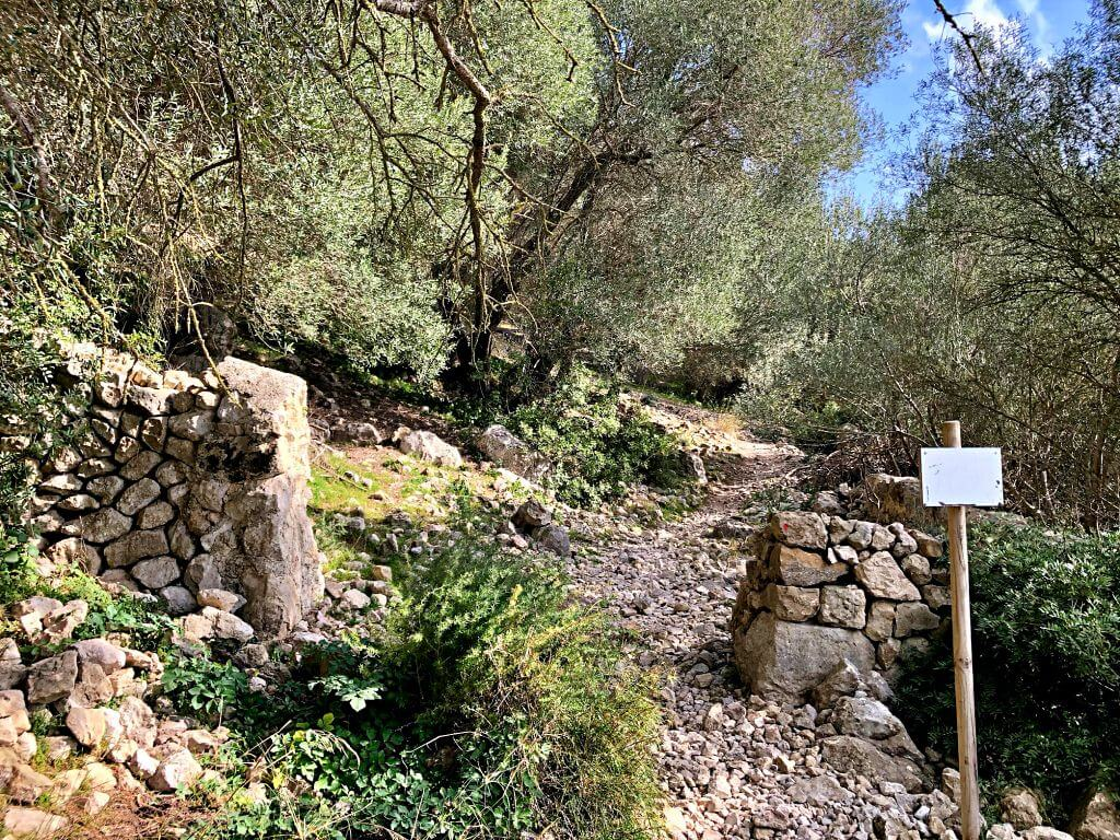 Subida al Puig de Sant Nofre